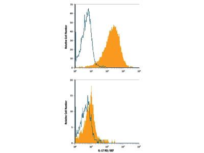 IL-17RD / SEF APC-conjugated Antibody