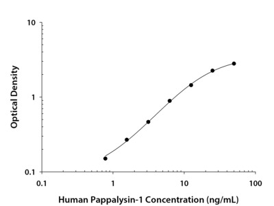 Pappalysin-1 / PAPP-A ELISA