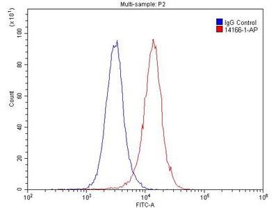 PTH2R Polyclonal Antibody