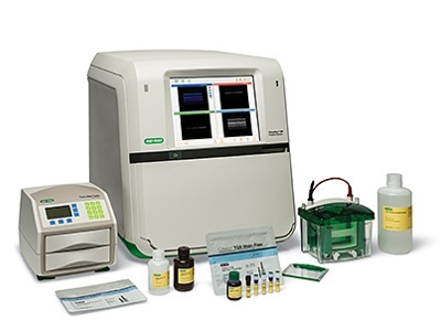 Molecular imagerr gel doctm xr system with image lab for Gel documentation system bio rad price