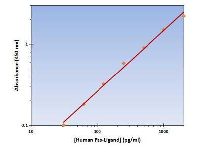 Fas Ligand ELISA Kit (Human) : 96 Wells (OKAG00119)