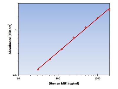 MIF ELISA Kit (Human) : 96 Wells (OKAG00237)