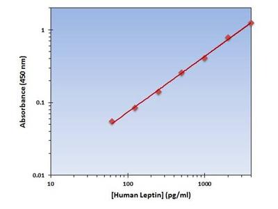 Leptin ELISA Kit (Human) : 96 Wells (OKAG00047)