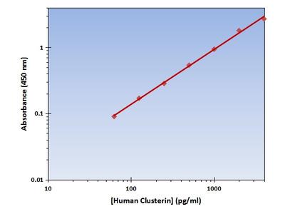 Clusterin ELISA Kit (Human) : 96 Wells (OKAG00210)