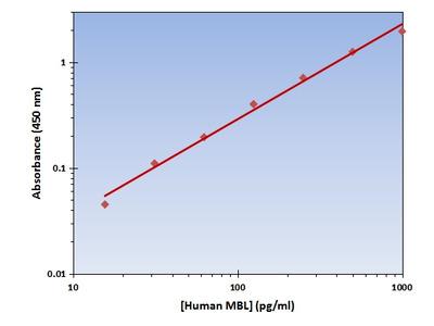 MBL ELISA Kit (Human) : 96 Wells (OKAG00235)