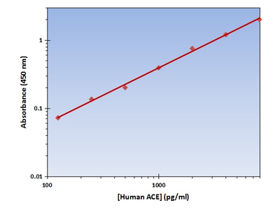 ACE ELISA Kit (Human) : 96 Wells (OKAG00191)