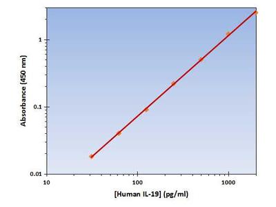 IL-19 ELISA Kit (Human) : 96 Wells (OKAG00141)