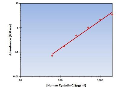 Cystatin C ELISA Kit (Human) : 96 Wells (OKAG00220)
