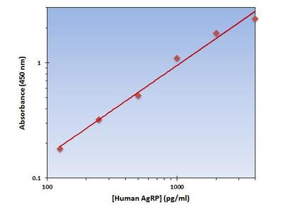 AgRP ELISA Kit (Human) : 96 Wells (OKAG00192)