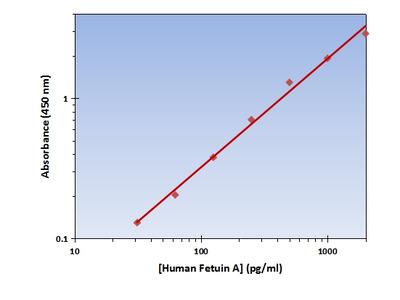 Fetuin A ELISA Kit (Human) : 96 Wells (OKAG00224)