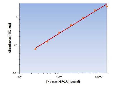 IGF-1R ELISA Kit (Human) : 96 Wells (OKAG00126)