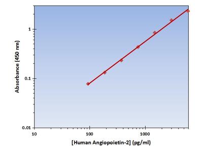 Angiopoietin-2 ELISA Kit (Human) : 96 Wells (OKAG00195)