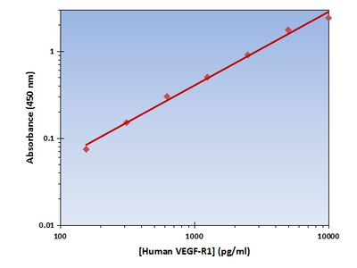 VEGF-R1 ELISA Kit (Human) : 96 Wells (OKAG00176)