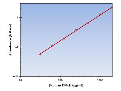TIM-1 ELISA Kit (Human) : 96 Wells (OKAG00258)