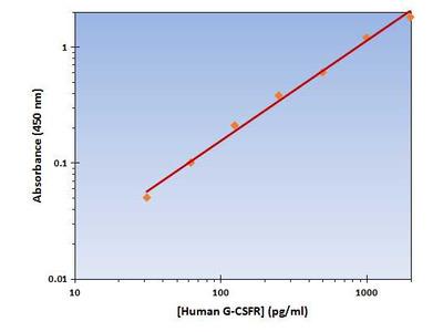 G-CSFR ELISA Kit (Human) : 96 Wells (OKAG00124)
