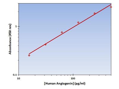 Angiogenin ELISA Kit (Human) : 96 Wells (OKAG00193)