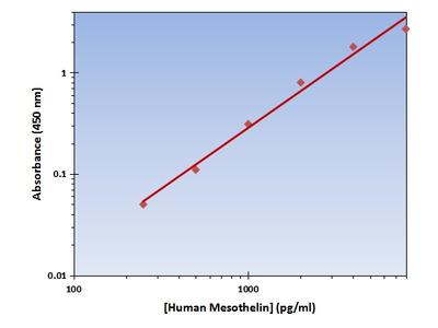 Mesothelin ELISA Kit (Human) : 96 Wells (OKAG00236)