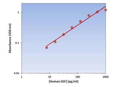 EGF ELISA Kit (Human) : 96 Wells (OKAG00012)