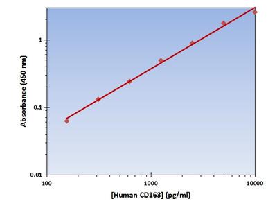 CD163 ELISA Kit (Human) : 96 Wells (OKAG00207)
