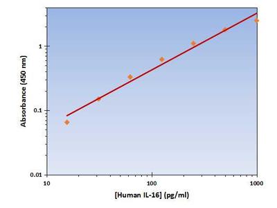 IL-16 ELISA Kit (Human) : 96 Wells (OKAG00134)