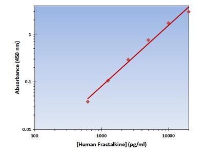 Fractalkine ELISA Kit (Human) : 96 Wells (OKAG00215)