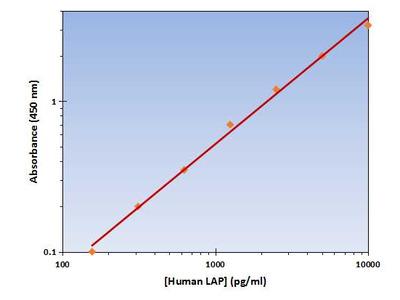 LAP ELISA Kit (Human) : 96 Wells (OKAG00150)