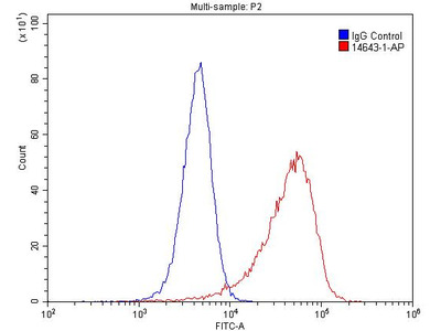 Highly Sensitive REEP5 Antibody from Proteintech