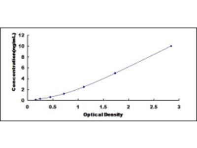 ELISA Kit for Protein Disulfide Isomerase A6 (PDIA6)