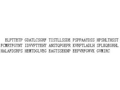 Recombinant Na-Cl Cotransporter (NCCT)