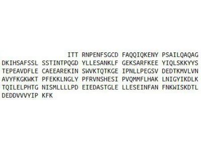 Recombinant Plasminogen Activator Inhibitor 2 (PAI2)