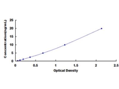 ELISA Kit for Dipeptidase 3 (DPEP3)