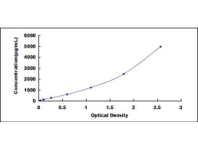 ELISA Kit for Multimerin 2 (MMRN2)