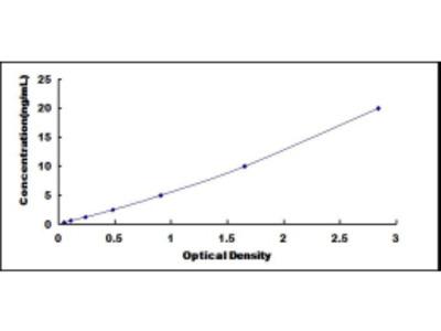ELISA Kit for Dual Specificity Phosphatase 9 (DUSP9)