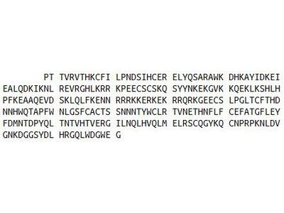 Recombinant Sulfatase 1 (SULF1)