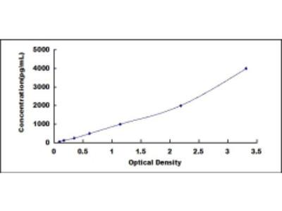 ELISA Kit for B-Cell Activating Factor (BAFF)