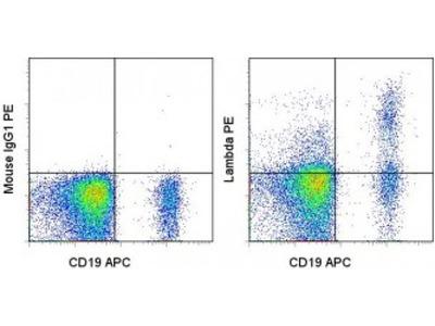 Ig lambda light chain antibody (PE)