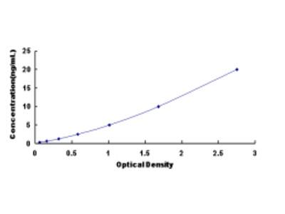 ELISA Kit for Multimerin 1 (MMRN1)