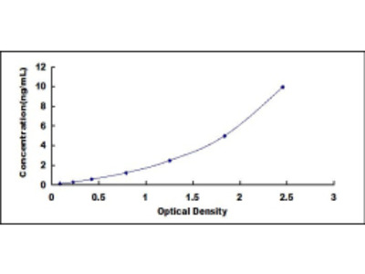 ELISA Kit for Deoxycytidine Kinase (DCK)