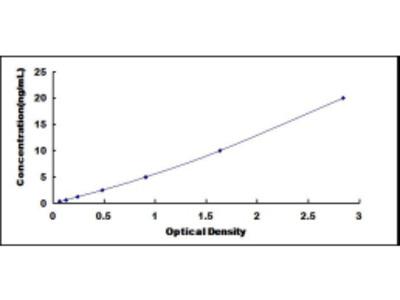 ELISA Kit for Zinc Ribbon Domain Containing Protein 1 (ZNRD1)
