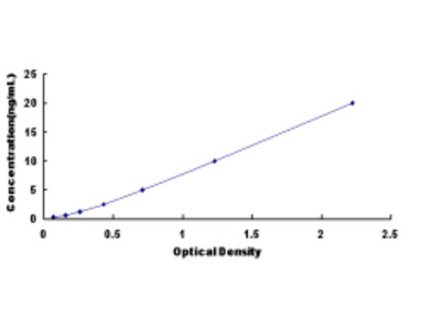 ELISA Kit for Excitatory Amino Acid Transporter 1 (EAAT1)