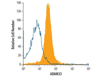 Human ADAM33 Antibody