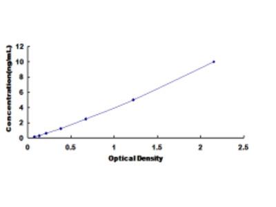 ELISA Kit for Lipase, Monoacylglycerol (MGL)