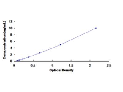 ELISA Kit for Gamma-Glutamyl Hydrolase (gGH)