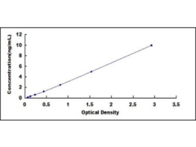 ELISA Kit for Lysyl Oxidase Like Protein 2 (LOXL2)
