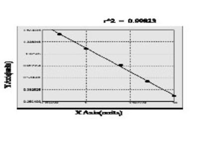 Human Alpha actinin 4 (ACTN 4) ELISA Kit