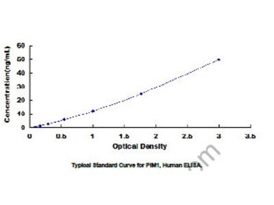 ELISA Kit for Pim-1 Oncogene (PIM1)