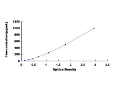 ELISA Kit for Glutamate Receptor, Ionotropic, AMPA 1 (GRIA1)