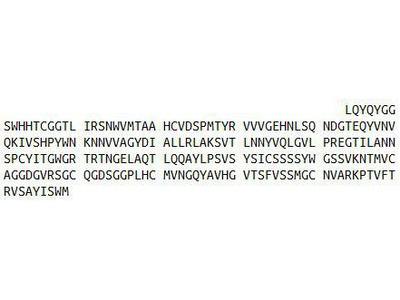 Recombinant Elastase 1, Pancreatic (ELA1)