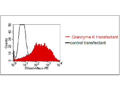 anti-human Granzyme K monoclonal antibody