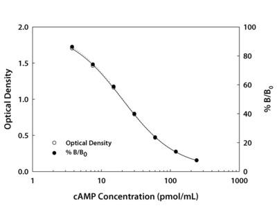 cAMP Parameter Assay Kit